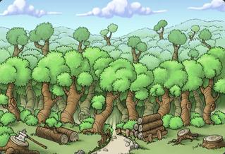 Lumber oasis